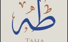 What is the meaning of TaHa?