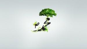 green-islam-splashed-300x225