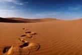 Umar-ibn-Al-Khattab.jpg