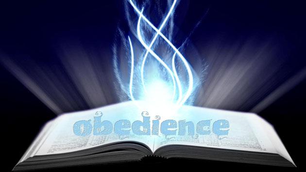 obedience2.jpg