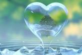 Love-and-Marriage-in-Islam-—-Divine-Love-Drop.jpg
