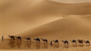 camel_caravan_crossing_the_libyan_desert.jpg
