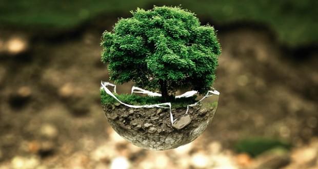 Islam and Environmental