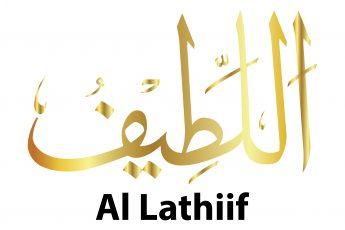 Beautiful Names of Allah: Al-Lateef