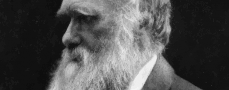 Does Darwinism Contradict the Qur'an?
