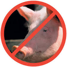 Why Does Islam Prohibit Eating Pork?