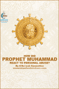 How Did Muhammad React to Personal Abuse? (E-Book)